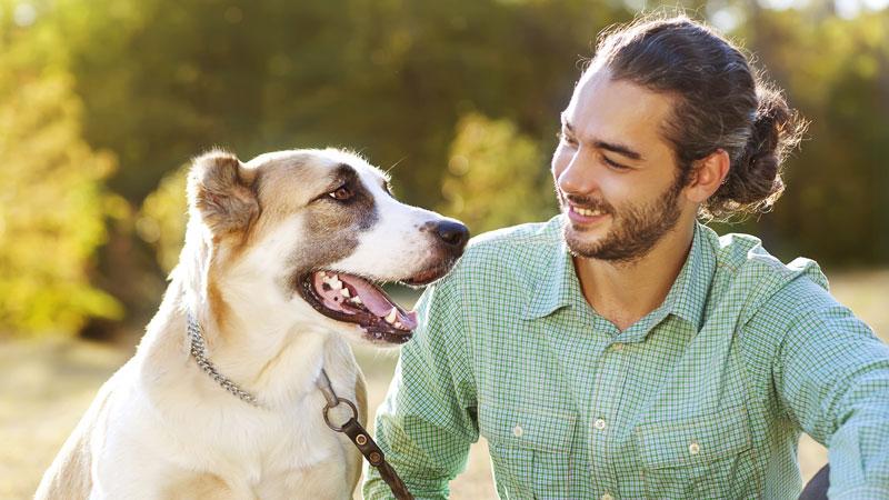 Devenir l'ami de son chien