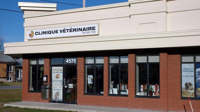 La Clinique vétérinaire, située au 4575, rue Des Fleurs, à Terrebonne