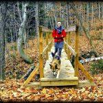 Pratiquer le Hiking avec votre chien : un moment inoubliable pour vous deux!